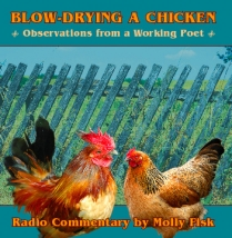 Chicken CD cover